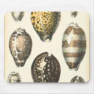 Uniquely Shaped Seashells Mouse Pad