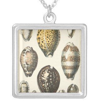 Uniquely Shaped Seashells Silver Plated Necklace