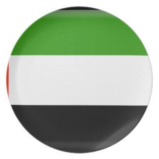 United Arab Emirates Plato Para Fiesta