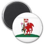 United Kingdom Cardiff Flag Refrigerator Magnet