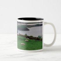United Kingdom, Scotland, Isle of Skye, old Two-Tone Coffee Mug