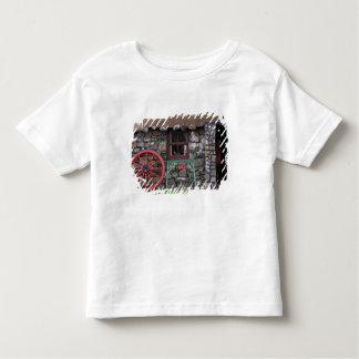 United Kingdom, Scotland, Isle of Skye, stone Toddler T-shirt