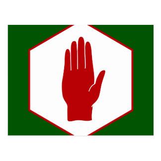 United Northern Ireland Emblem flag Postcard