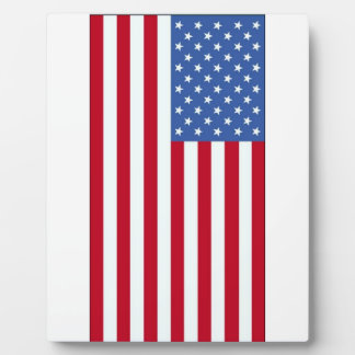 United State of America Flag Plaque