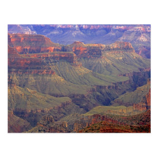 United States, Arizona, Grand Canyon National Postcard