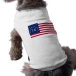 United States Bennington Flag Spirit of 76 Pet Clothing