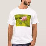 United States, DC, Washington, Kenilworth 2 T-Shirt