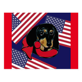 UNITED STATES DOXIE POSTCARD