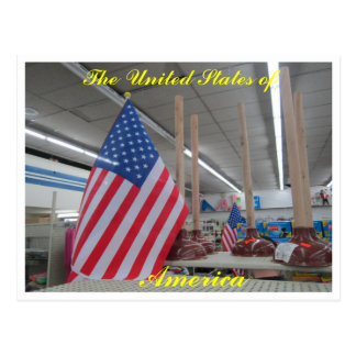 United States flags n' plungers postcard