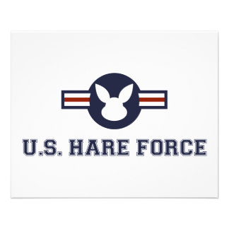United States Hare Air Force Bunny Flyer