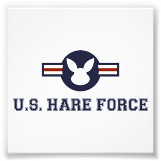 United States Hare Air Force Bunny Photo Print