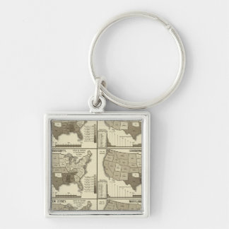 United States lithographed maps 2 Keychain