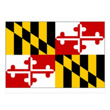 All_Flags United States Maryland Flag Postcard