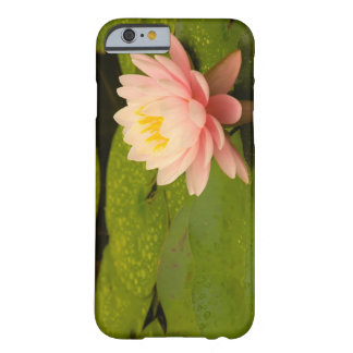 United States, Maryland, Westminster, Union 2 iPhone 6 Case