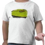 United States, Maryland, Westminster, Union 2 T-shirt
