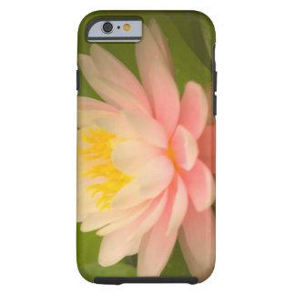 United States, Maryland, Westminster, Union iPhone 6 Case