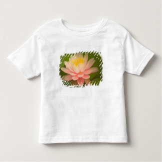United States, Maryland, Westminster, Union Toddler T-shirt