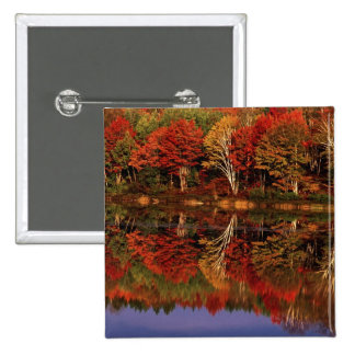 United States, Michigan, Upper Peninsula. Fall Button