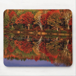 United States, Michigan, Upper Peninsula. Fall Mouse Pad
