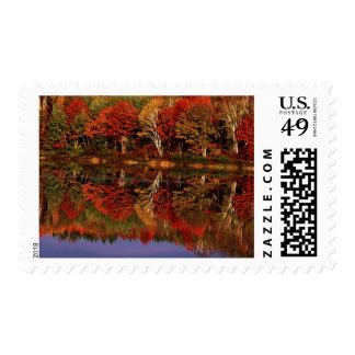 United States, Michigan, Upper Peninsula. Fall Postage
