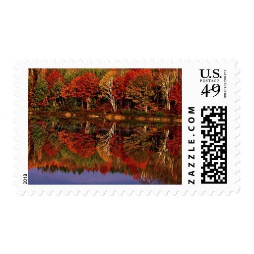 United States, Michigan, Upper Peninsula. Fall Postage Stamp