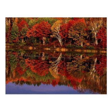 DanitaDelimont United States, Michigan, Upper Peninsula. Fall Postcard