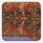 United States, Michigan, Upper Peninsula. Fall Square Stickers