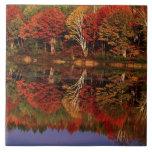 United States, Michigan, Upper Peninsula. Fall Tiles