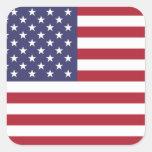 United States National Flag Sticker