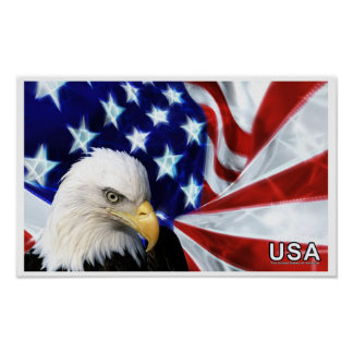 United States of America Bald Eagle Flag Poster