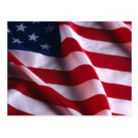 United States of America National  Flag Postcard