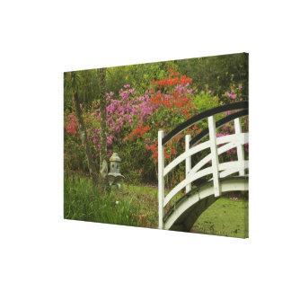 United States; South Carolina; Charleston; 5 Stretched Canvas Print