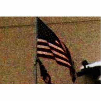 UNITED STATES STATUETTE