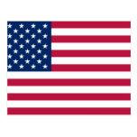 United States, United Arab Emirates flag Postcard