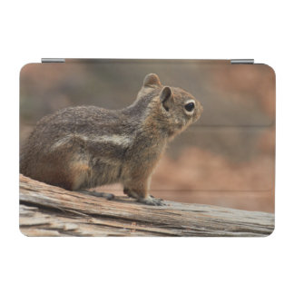 United States, Utah, Bryce Canyon National Park 1 iPad Mini Cover