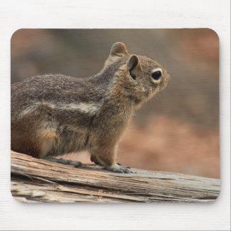 United States, Utah, Bryce Canyon National Park 1 Mouse Pad
