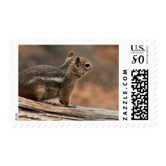 United States, Utah, Bryce Canyon National Park 1 Postage