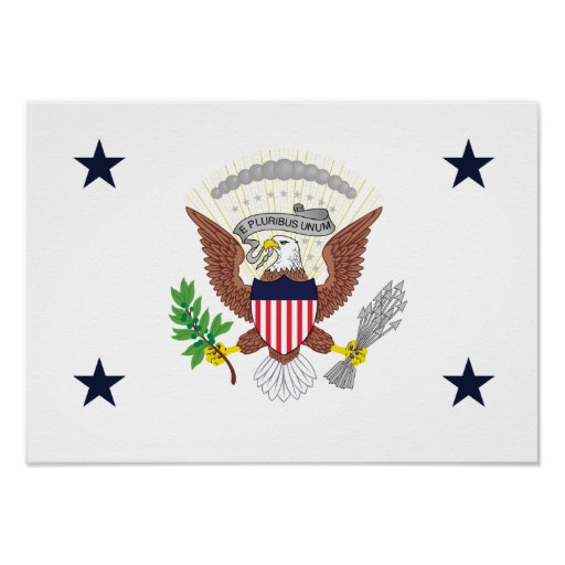 United States Vice Presidential Print