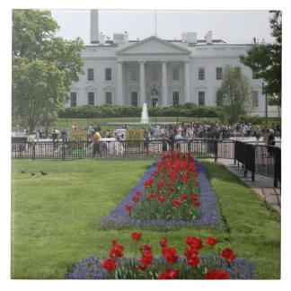 United States, Washington, D.C. The North side Ceramic Tile