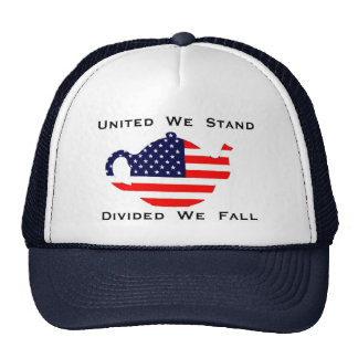 United We Stand Divided We Fall  Patriotic Hat