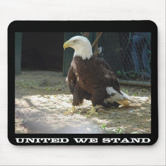 United We Stand Mouse Pad