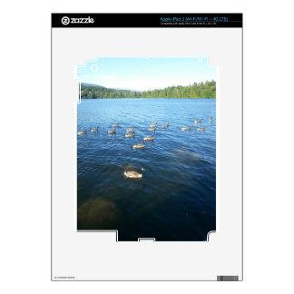 Unity among Believers Skin For iPad 3
