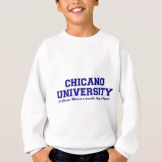 Universidad chicana playeras