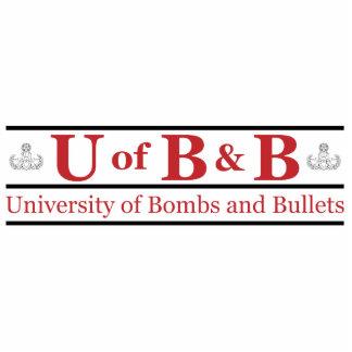 Universidad de bombas y de balas escultura fotografica