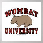 Universidad de Wombat Posters