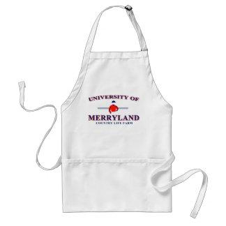 Universidad del delantal de Merryland