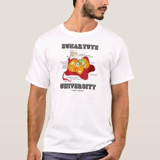 Universidad del eucariota (célula animal) playera