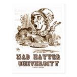 Universidad enojada del sombrerero (país de las ma tarjeta postal