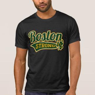 Universidad fuerte del trébol del estadio de camisas