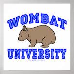 Universidad II de Wombat Poster